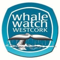 Whale Watch West Cork 1