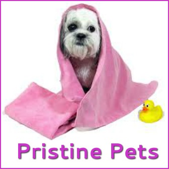 Pristine Pets by Tina Dog Groomer