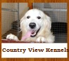 Country View Boarding Kennels and Grooming Parlour 1