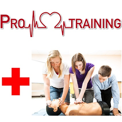 Pro Training/ First Aid, Manual Handling 1