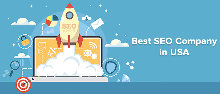 Best Professional SEO Company in USA | Best SEO Company in USA