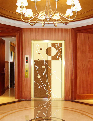 DongNan Elevator Co., Ltd image 2