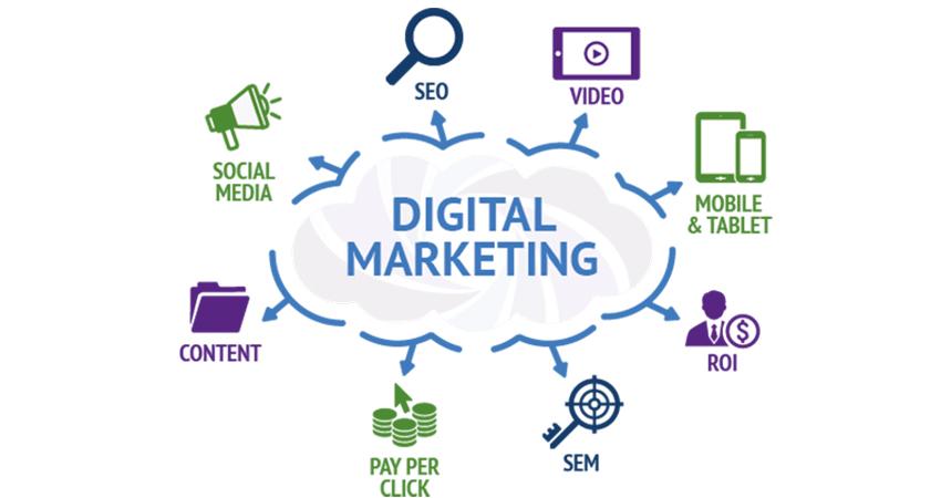 Freelance Digital Marketing Expert image 1