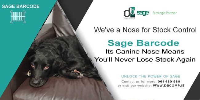 SNIFFS OUT STOCK With a Canine's Nose, You'll Never Lose stock again