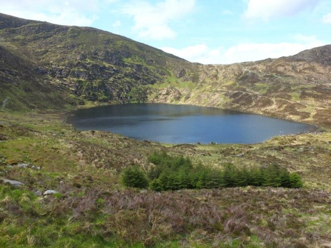 Country Residence For Sale in Gullaba Forest & Lake, Kerry