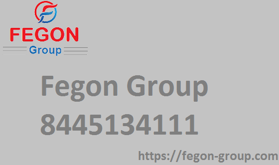 Fegon Group LLC - Network Security Solutions - 8445134111
