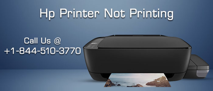 Why is my HP printer not printing?