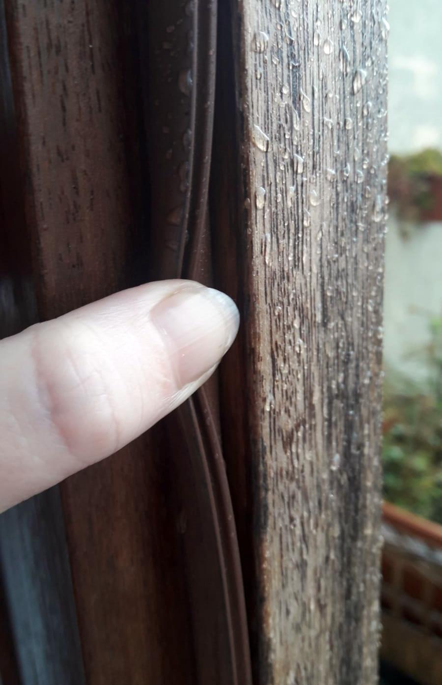 Munster Joinery Timber Door Draft Seal in 5 metre lengths (Black) image 4